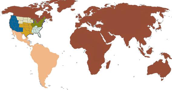 BlankMap-World