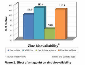 Bioavailability of SQM Zinc